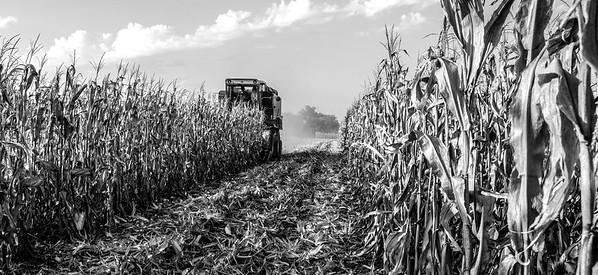 International Harvester 1420