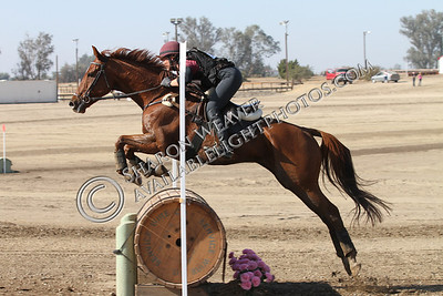Aid_and_Abet_102013_1380