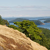 The view from Tip Top Hill conservation easement on Stuart Island. Photo credit Alan Fritzburg.