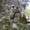 Climbing With Cardigan