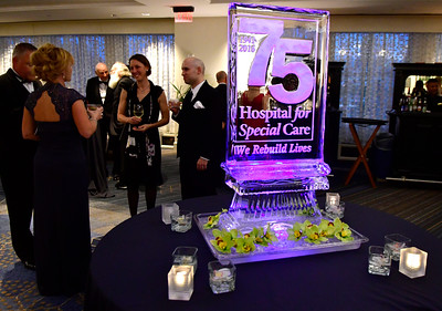 10/21/2016 Mike Orazzi | Staff  The Hospital for Special Care's 75th Anniversary gala celebration held at the Hartford Marriott Friday night.