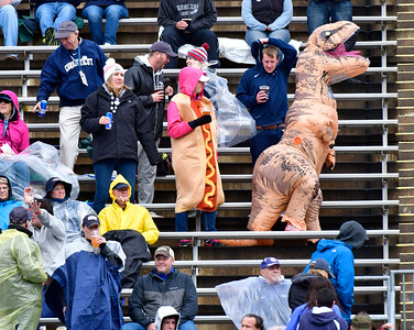 10/22/2016 Mike Orazzi | Staff A hot dog and a dinosaur in the stands for the UConn football game Saturday against UCF.