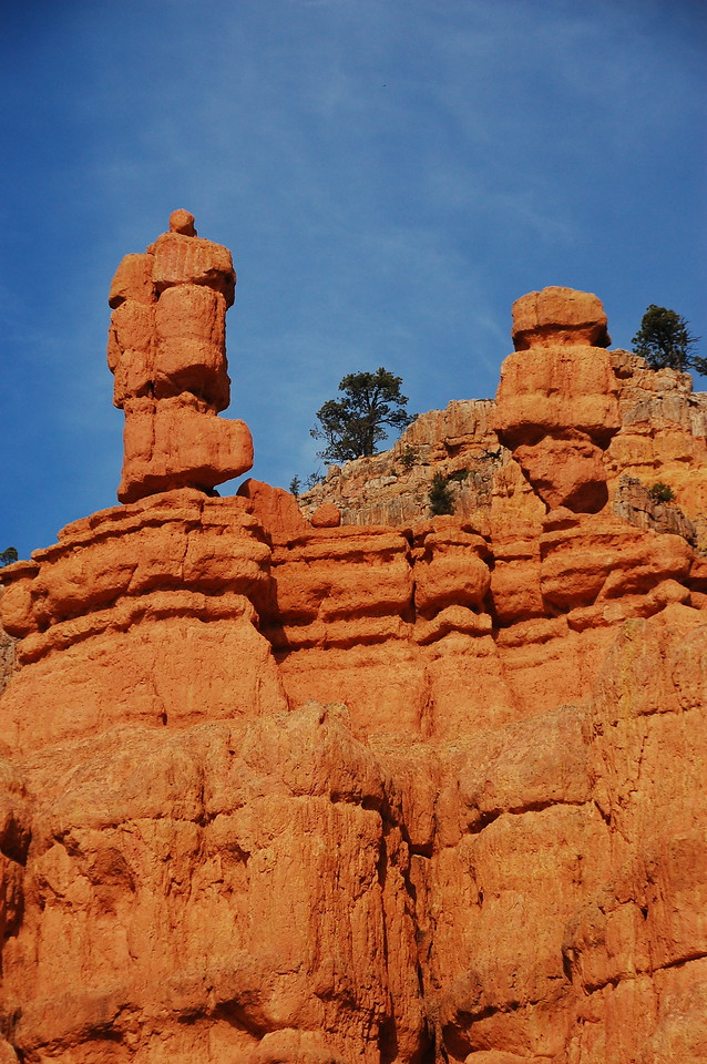 Red Canyon in the Dixie NF.