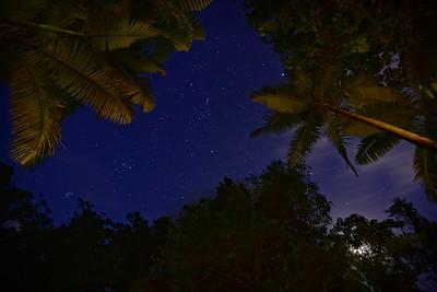 Lync Haven. Starry Night. 3.