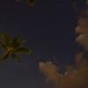 Cardwell Van Park at Night. 1.