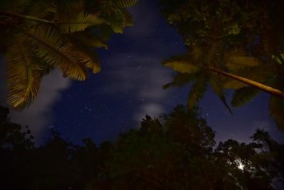 Lync Haven. Starry Night.