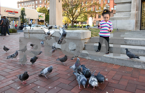 10/02/17 Wesley Bunnell | Staff Pigeons flock around Penelope Navarro, age 2, as she throws small pieces of bread to them in Central Park on Monday afternoon.