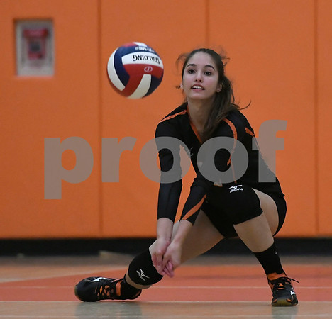 10/11/2017 Mike Orazzi | Staff Terryville's Alyssa Prozzo during Wednesday night's match with Northwestern.