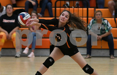 10/11/2017 Mike Orazzi   Staff Terryville's Alyssa Prozzo (12) during Wednesday night's volleyball match in Terryville.