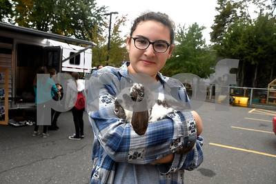 10/14/2017 Mike Orazzi | Staff Southington High School Regional Agriculture Program's Emma Zenobi with Thumper during a Harvest Day Festival held at the Imagine Nation Museum Early Learning Center in Bristol Saturday morning.