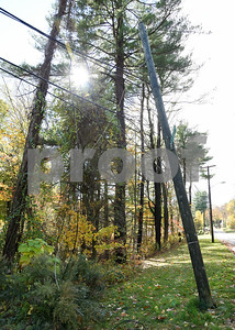 10/30/17  Wesley Bunnell   Staff  High winds and heavy rain on Sunday and into Monday morning caused trees to fall and disrupt services to city residents.  A pole leans severely to one side with down wires at the intersection of Shuttlemeadow and Reservoir on Monday afternoon.