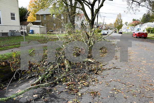 10/30/17 Wesley Bunnell | Staff High winds and heavy rain on Sunday and into Monday morning caused trees to fall and disrupt services to city residents. A tree lies to the side near the intersection of Chapman & Linden St.