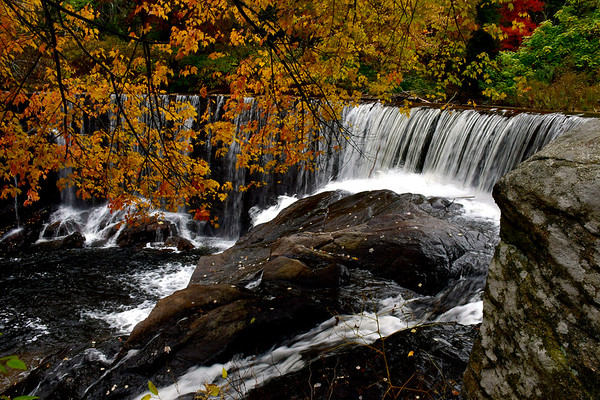 10/24/2018 Mike Orazzi | Staff Fall color in the Pequabuck section of Plymouth Wednesday.