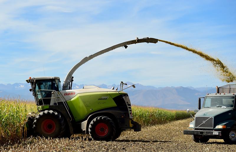 Boulder County carbon capture and sequestration pilot program