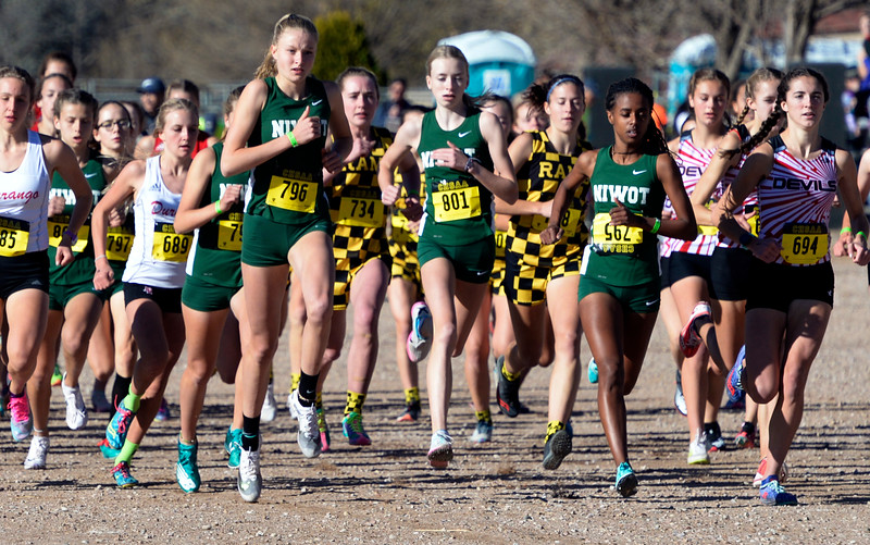 State High School Cross Country Championships