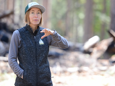 Calli-Jane DeAnda, executive director of the Butte County Fire Safety Council, speaks about fire concerns during the Berry Creek forest health tour Tuesday in Berry Creek. (Matt Bates -- Enterprise-Record)