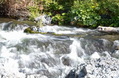 Big Chico Creek flows through Bear Hole on Wednesday in Chico. (Matt Bates -- Enterprise-Record)