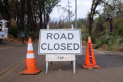 A Butte County contractor began removing hazard trees from the public right-of-way in Butte Creek Canyon on Sept. 23, closing the north end of Honey Run Road until late November. (Camille von Kaenel -- Enterprise-Record)