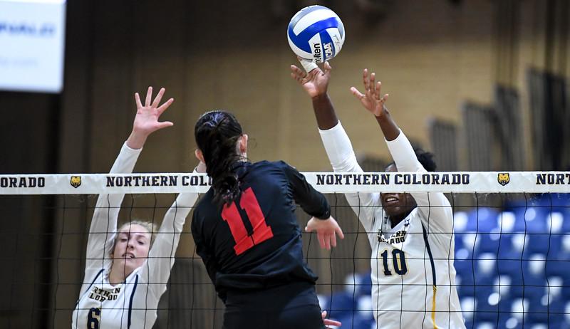 Southern Utah Northern Colorado Volleyball