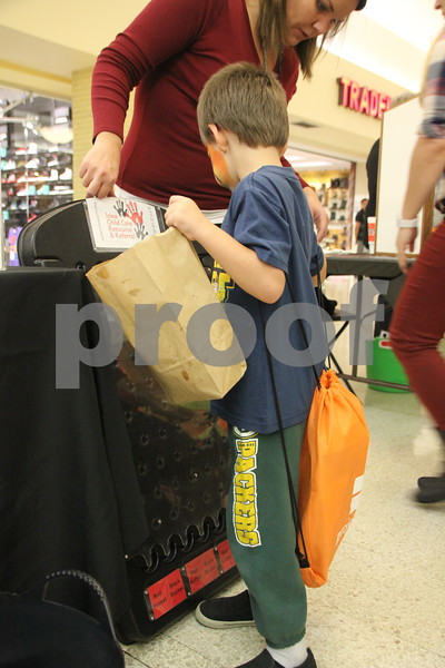 On Saturday, October 24, 2015, Crossroads Mall in Fort Dodge held the Kidzmania event. The Mall was filled with vendors of every kind offering opportunities to learn lots of things, have some candy, and play games. Pictured here (in the Packers pants and blue shirt and holding the paper sack) is Adrian Hall, playing a small version of the  game Plinko. Afterwards, he  got to pick out a prize.