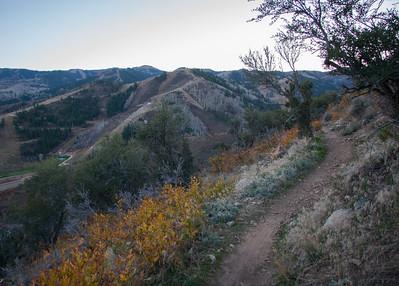 Mtn Biking Rosebud's Heaven Trail