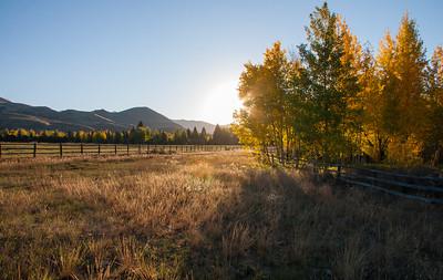 Aspen morning