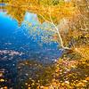Corning Lake trail