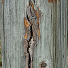 Wood cut - 3