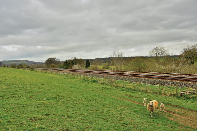 Tyne Valley Railway Photography