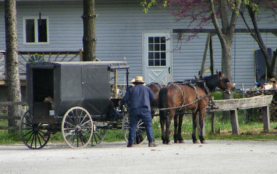 Amish Neighbors