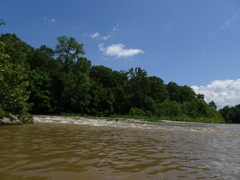 A muddy river on a beautiful day