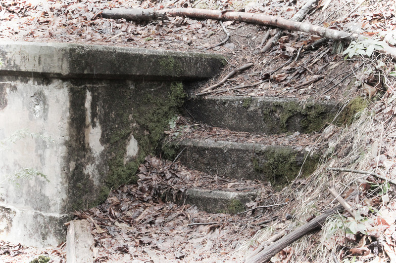 Steps at the spring