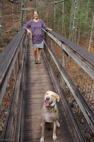 11-10-2020: North River Gorge Trail