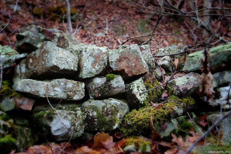 Old wall in the woods -- for old railroad, I believe.