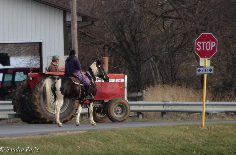 12-21-16: Traffic, Rockingham County