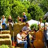 9-24-16:Spring Creek Barn sale.
