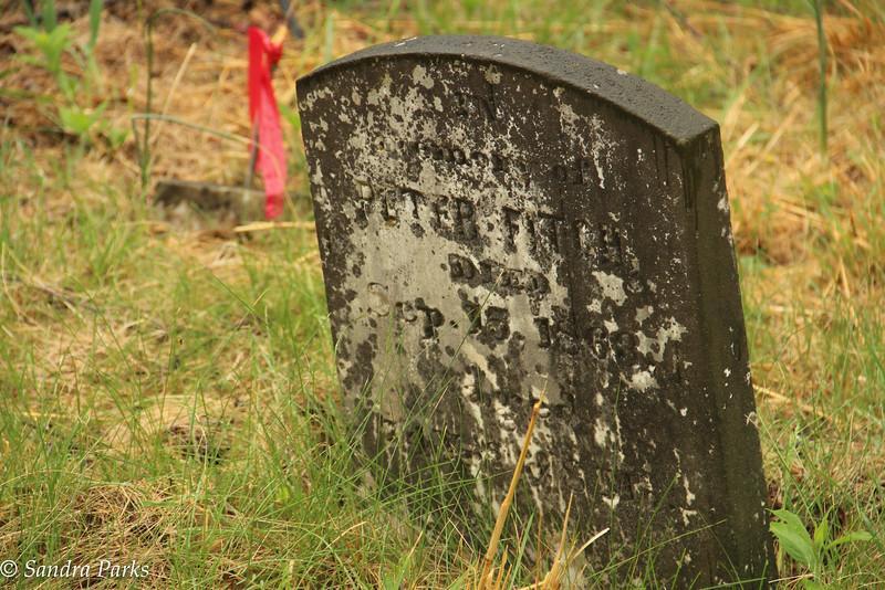 4-27-16: port Republic graveyard