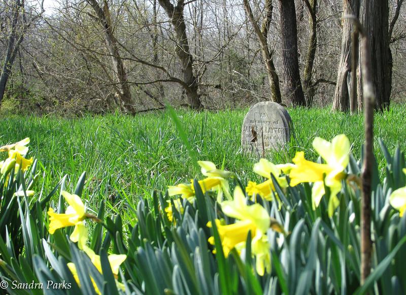 3-26-16: Port Republic Graveyard