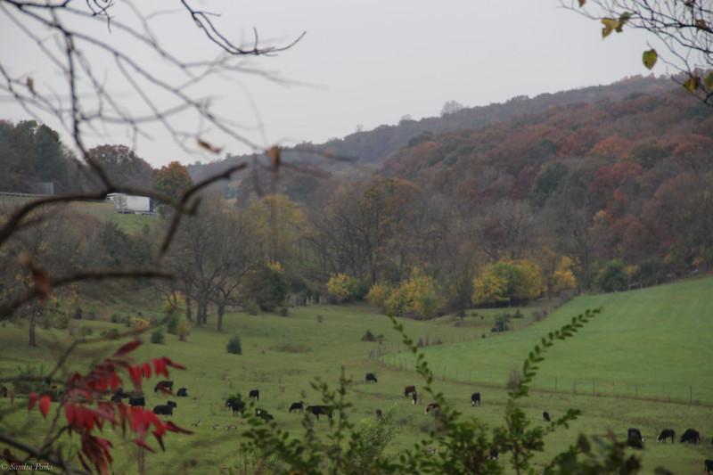 Soxman Farm