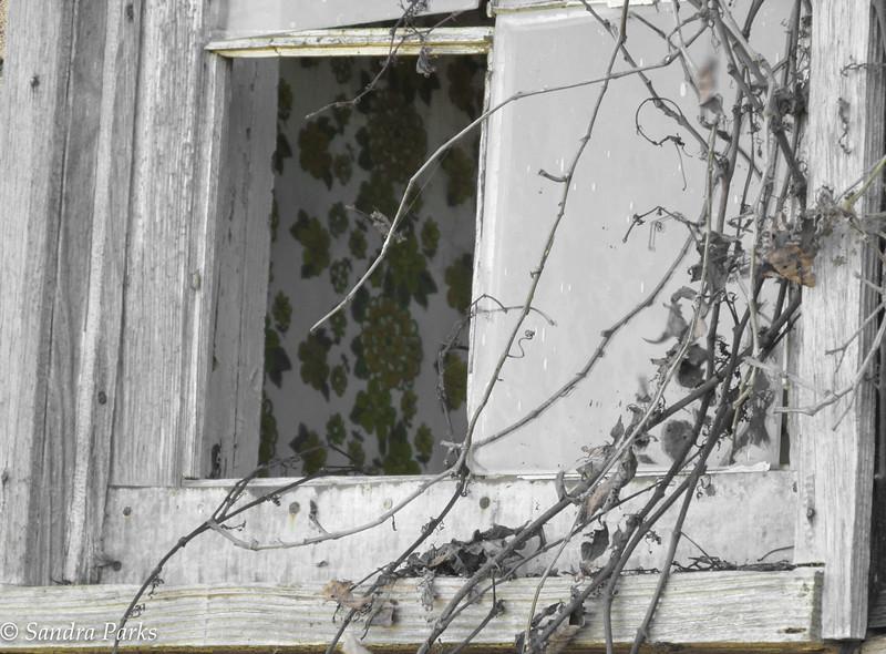 11-21-15: old window