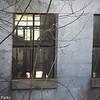4-4-15: windows of an old barn, Fadley Road