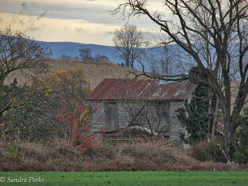 11-7-15: Abandoned house, Timber RIdge