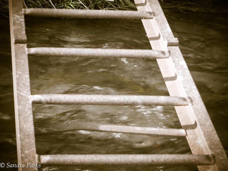 5-29-15: Bridge over Spring Creek