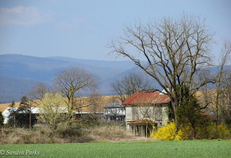 3-26-16: Abandoned house, Timber Ridge