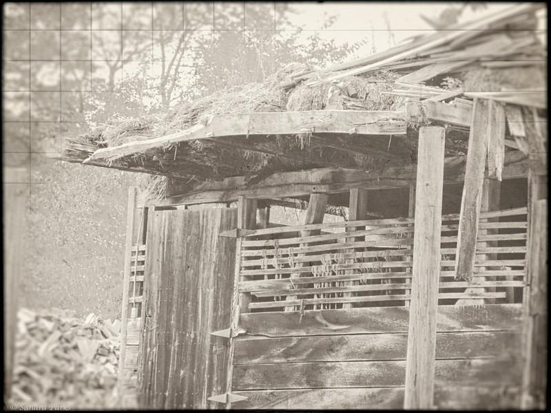 8-23-14: decomposing barn, Roman Road.