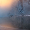 1-24-16: Dawn comes North River