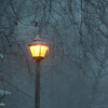 1-23-16: Light post at Wildwood