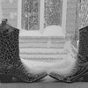 1-23-16: boots
