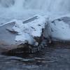 Ice, below the dam