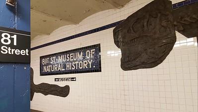 Subway Art 81 Street Station- Museum of Natural History